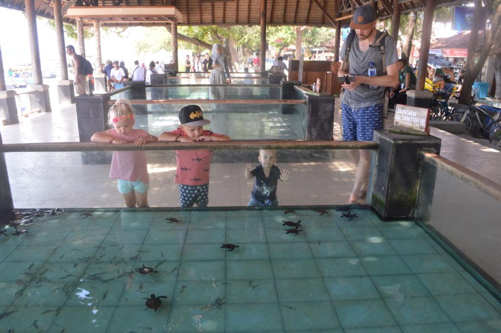 Gili Trawangan met kinderen