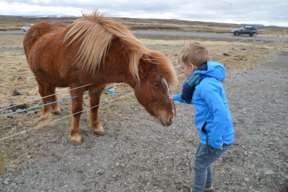 Reisfilm rondreis IJsland met kinderen