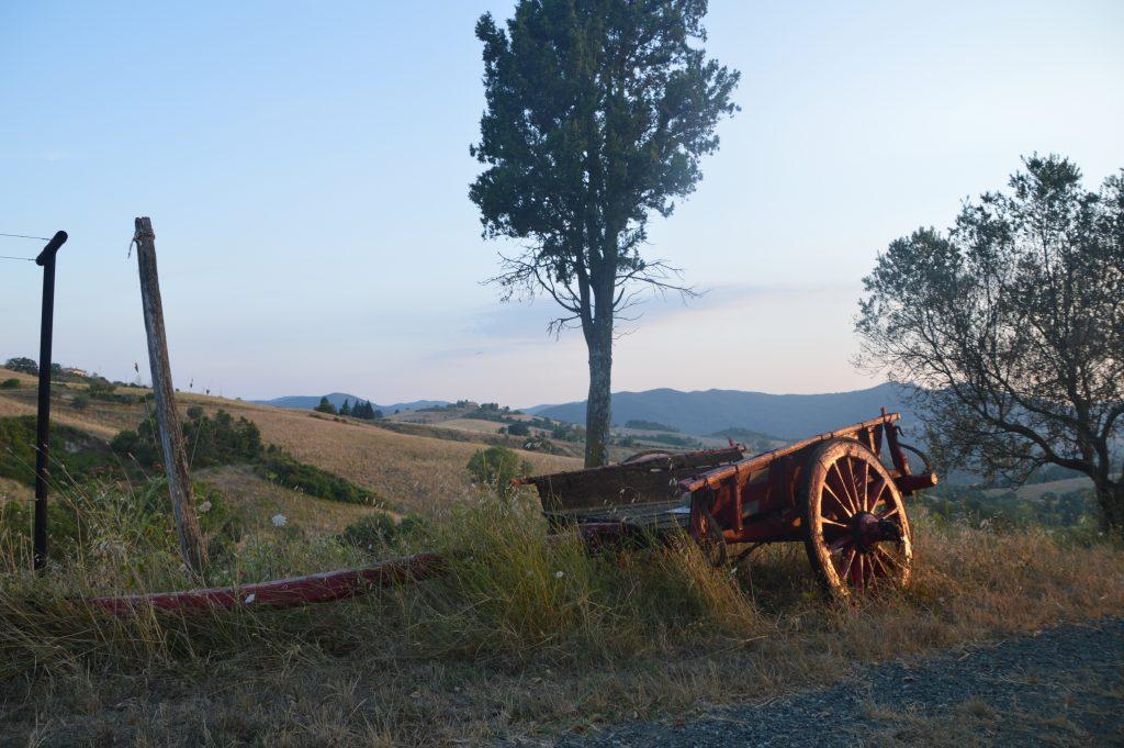 Ezeltocht door Toscane met Altratoscana