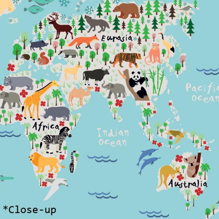 wereldkaart op de kinderkamer