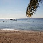 Mexico: Strand en zeeschildpadden in Akumal met kinderen
